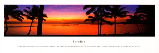 Paradise Panoramic Photograph